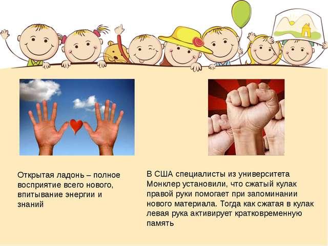 В США специалисты из университета Монклер установили, что сжатый кулак правой...