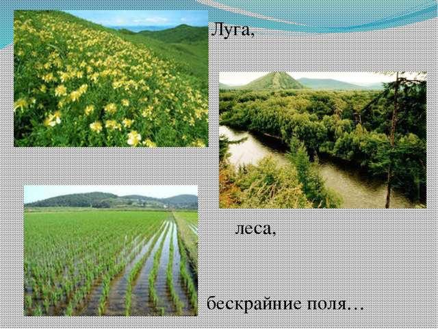 леса, Луга, бескрайние поля…