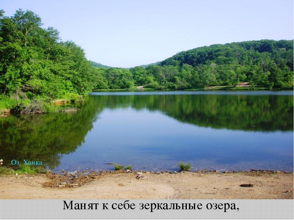 Манят к себе зеркальные озера, Оз. Ханка