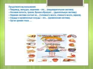 Продолжите высказывания: – Пищевод, желудок, кишечник – это… (пищеварительная