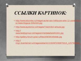ССЫЛКИ КАРТИНОК: http://www.elizonka.ru/image/cache/-axx-lrdfdyuxe-winx-12-us