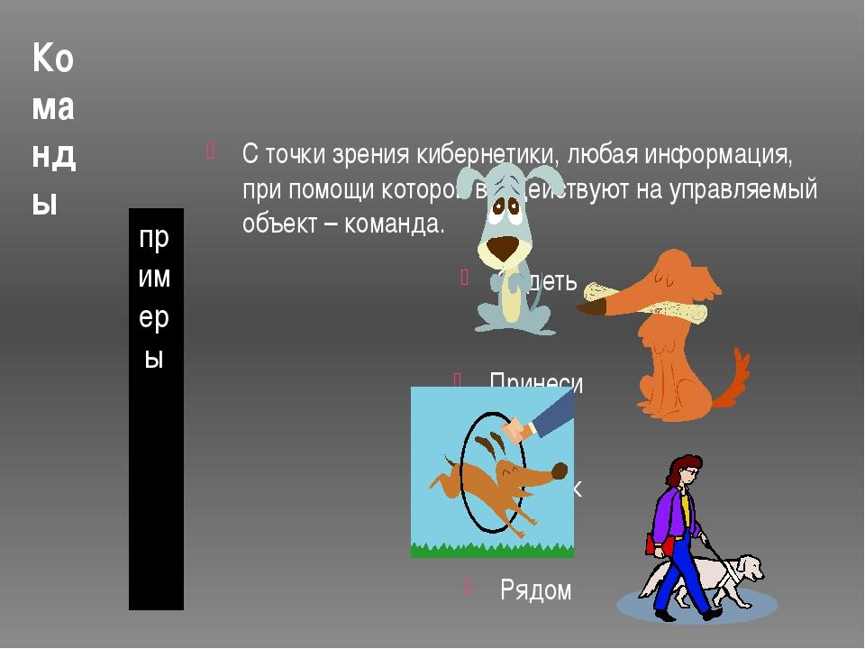Команды примеры С точки зрения кибернетики, любая информация, при помощи кото...