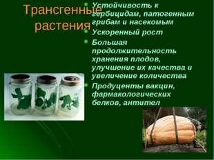 Трансгенные растения Устойчивость к гербицидам, патогенным грибам и насекомым