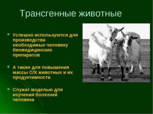 Трансгенные животные Успешно используются для производства необходимых челове