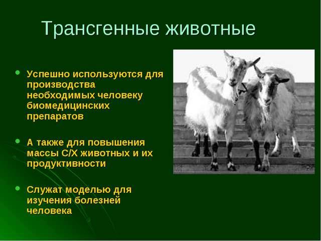 Трансгенные животные Успешно используются для производства необходимых челове...