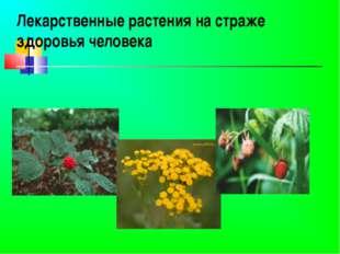 Лекарственные растения на страже здоровья человека