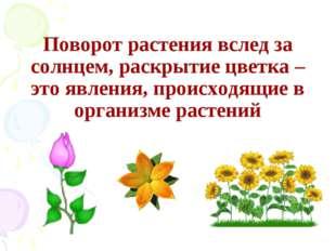 Поворот растения вслед за солнцем, раскрытие цветка – это явления, происходящ