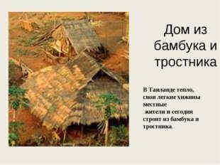 Дом из бамбука и тростника В Таиланде тепло, свои легкие хижины местные жител