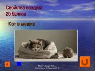 Свойства воздуха 20 баллов Кот в мешке МБОУ «Лицей №8» г. Красноярск. Бобылев