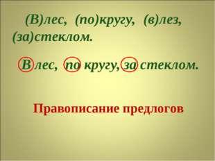 Правописание предлогов (В)лес, (по)кругу, (за)стеклом. В лес, по кругу, за ст