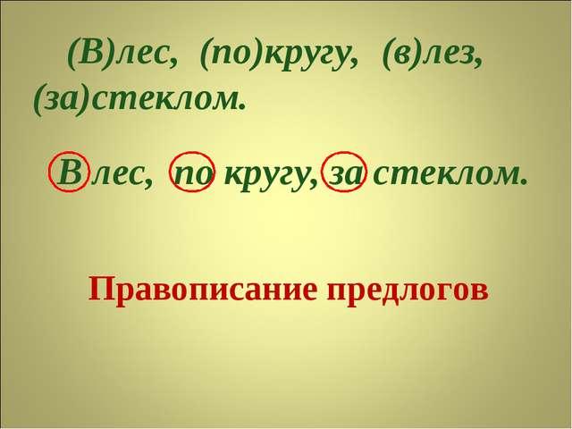 Правописание предлогов (В)лес, (по)кругу, (за)стеклом. В лес, по кругу, за ст...