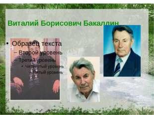 Виталий Борисович Бакалдин