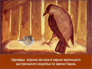 Однажды ворона застала в ларьке маленького растрепанного воробья по имени Паш