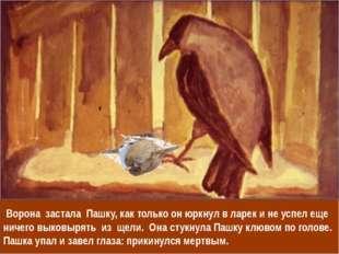 Ворона застала Пашку, как только он юркнул в ларек и не успел еще ничего вык