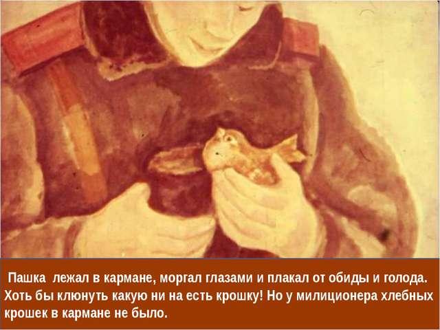 Пашка лежал в кармане, моргал глазами и плакал от обиды и голода. Хоть бы кл...