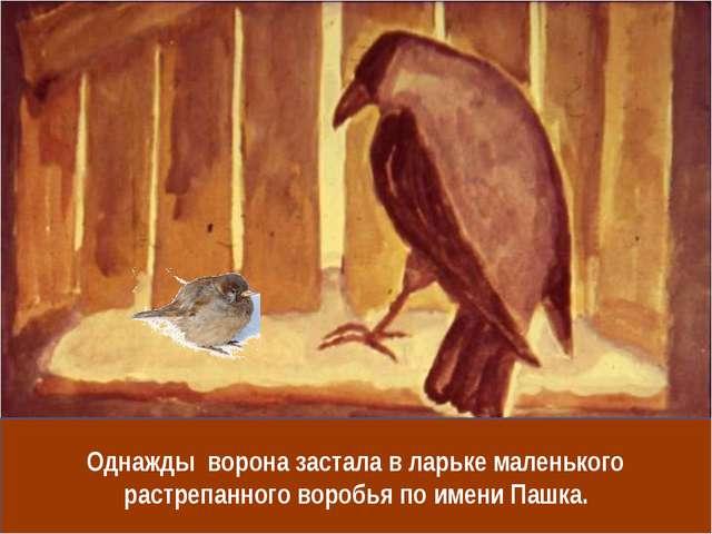 Однажды ворона застала в ларьке маленького растрепанного воробья по имени Паш...
