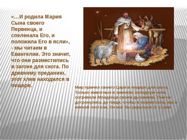 «…И родила Мария Сына своего Первенца, и спеленала Его, и положила Его в ясл...