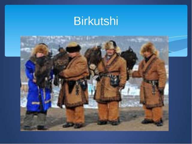 Birkutshi