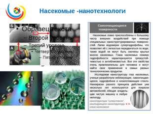 Насекомые -нанотехнологи