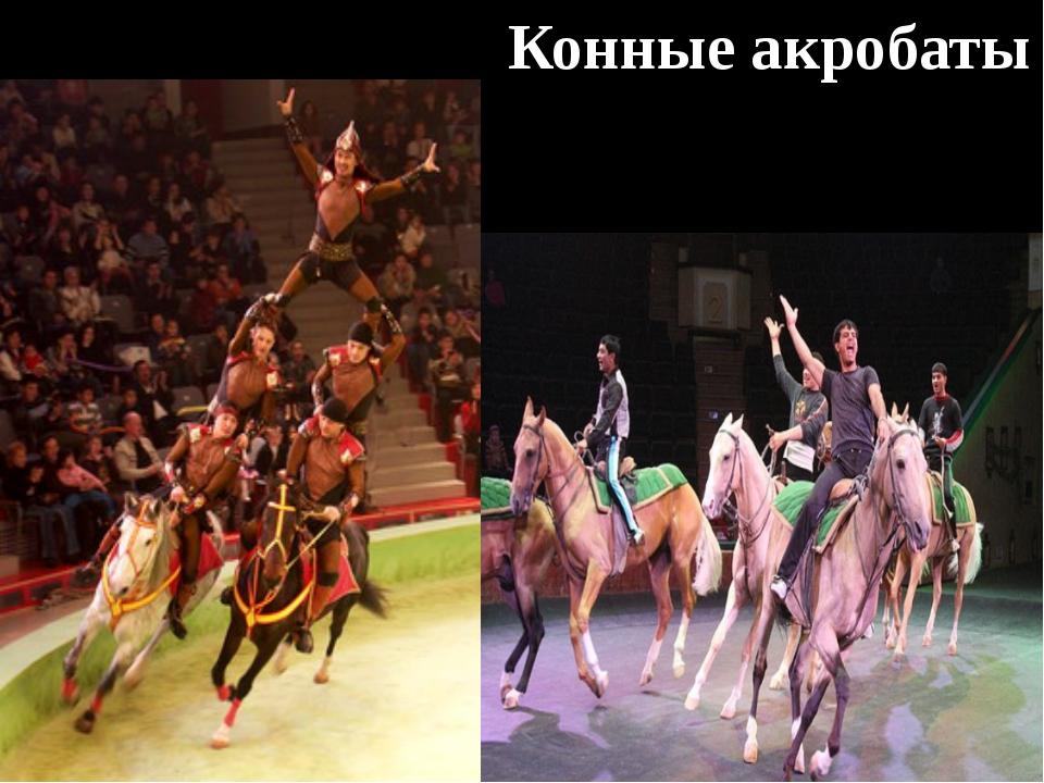 Конные акробаты