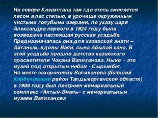 На севере Казахстана там где степь сменяется лесом а лес степью, в урочище ок