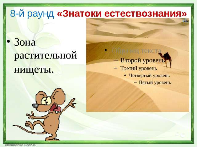 8-й раунд «Знатоки естествознания» Зона растительной нищеты.