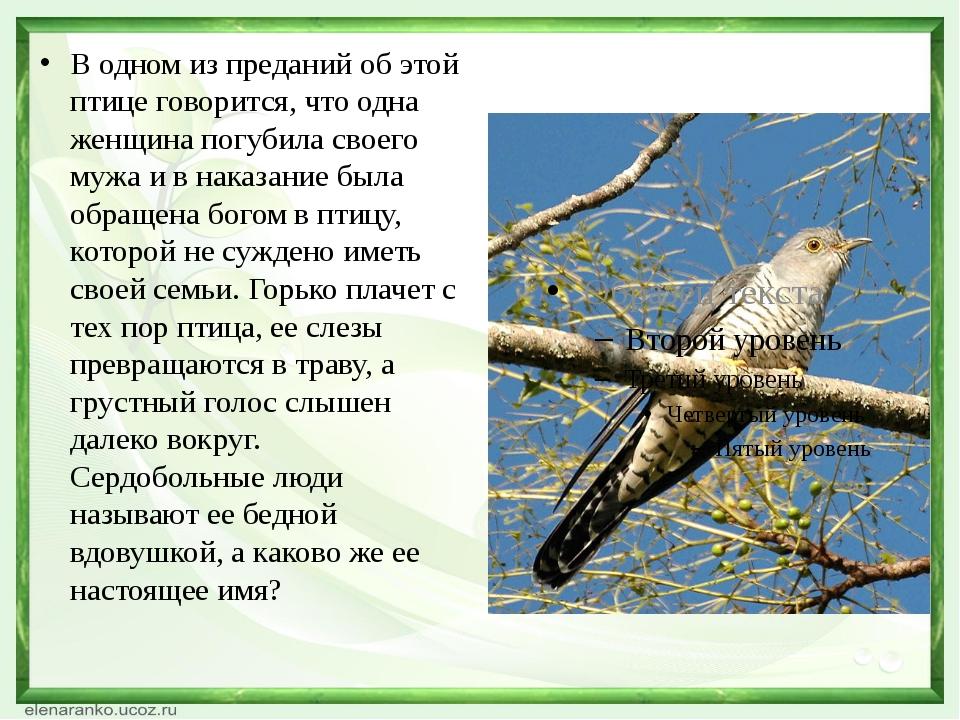 В одном из преданий об этой птице говорится, что одна женщина погубила своег...