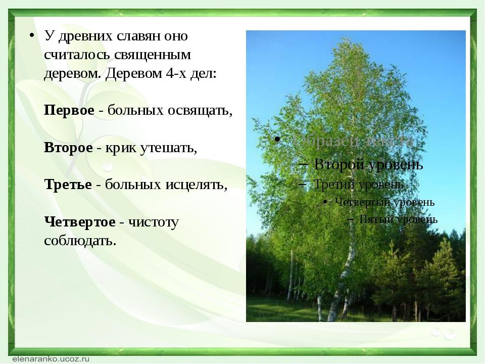 У древних славян оно считалось священным деревом. Деревом 4-х дел: Первое -...