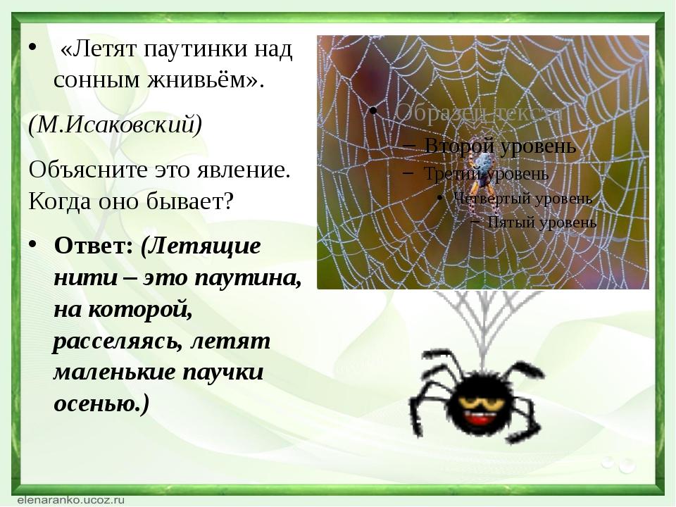 «Летят паутинки над сонным жнивьём». (М.Исаковский) Объясните это явление....