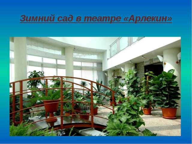 Зимний сад в театре «Арлекин»