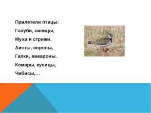 Прилетели птицы: Голуби, синицы, Мухи и стрижи. Аисты, вороны, Галки, макаро