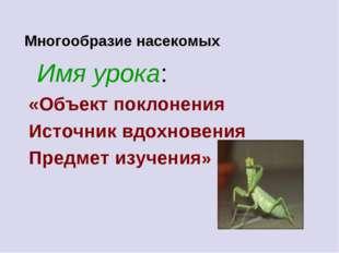 Многообразие насекомых Имя урока: «Объект поклонения Источник вдохновения Пр