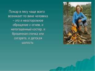 Пожар в лесу чаще всего возникает по вине человека – это и неосторожное обращ