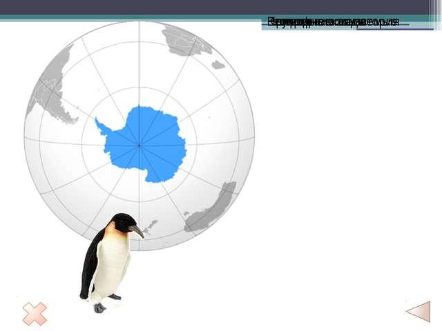 Накопление льда приводит к течению льда к побережью. Ледники Антарктиды деля...