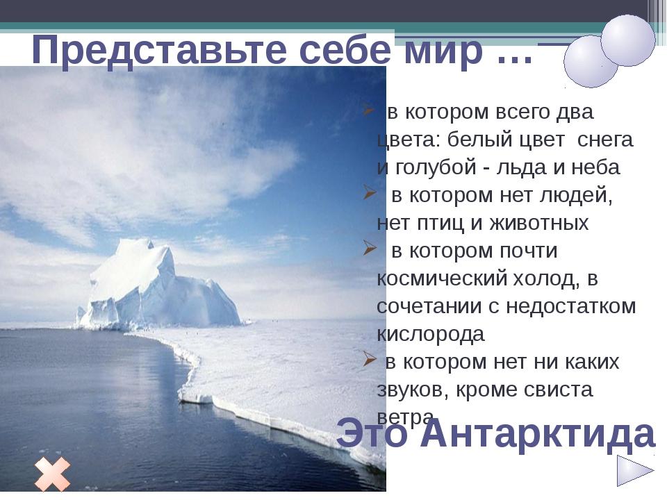 Представьте себе мир … в котором всего два цвета: белый цвет снега и голубой...