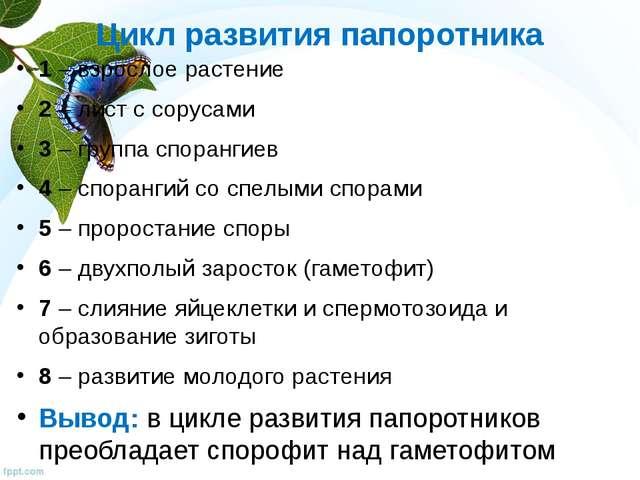 Цикл развития папоротника 1 – взрослое растение 2 – лист с сорусами 3 – групп...