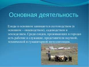 Основная деятельность Езиды в основном занимаются скотоводством (в основном –
