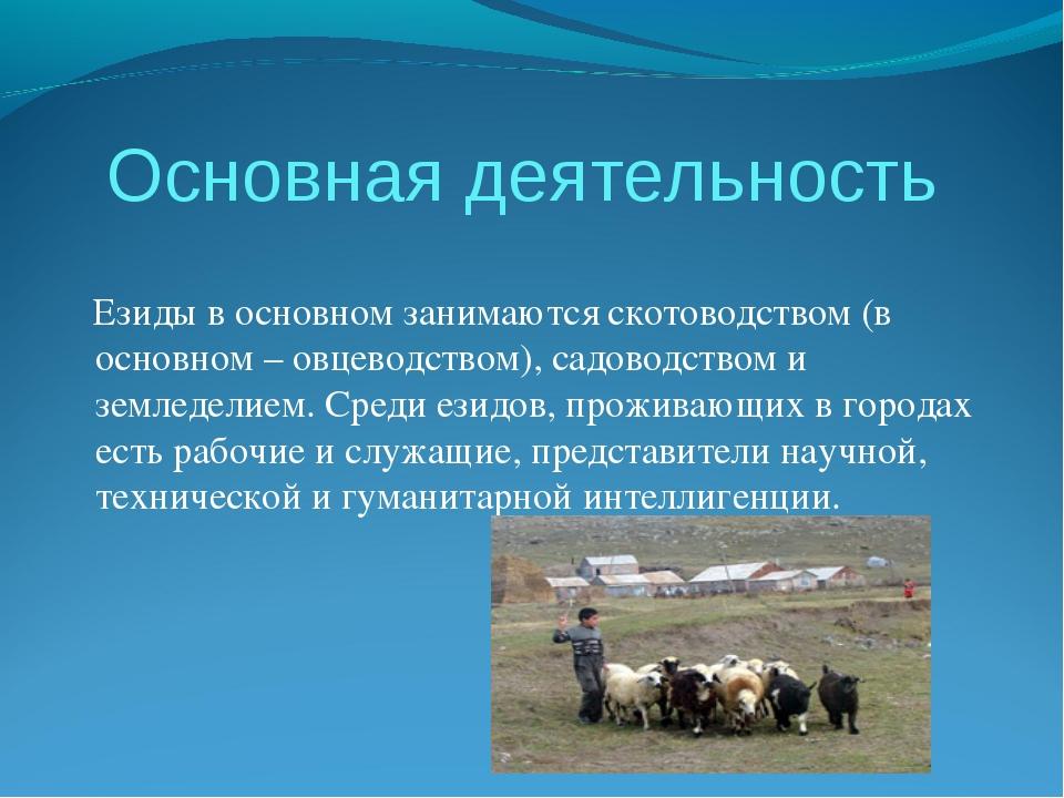 Основная деятельность Езиды в основном занимаются скотоводством (в основном –...