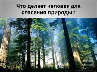 Что делает человек для спасения природы?