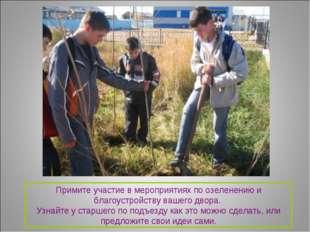 Примите участие в мероприятиях по озеленению и благоустройству вашего двора.