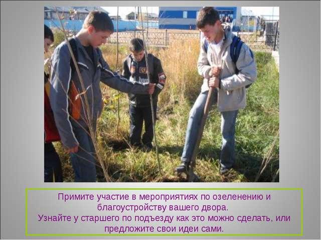 Примите участие в мероприятиях по озеленению и благоустройству вашего двора....