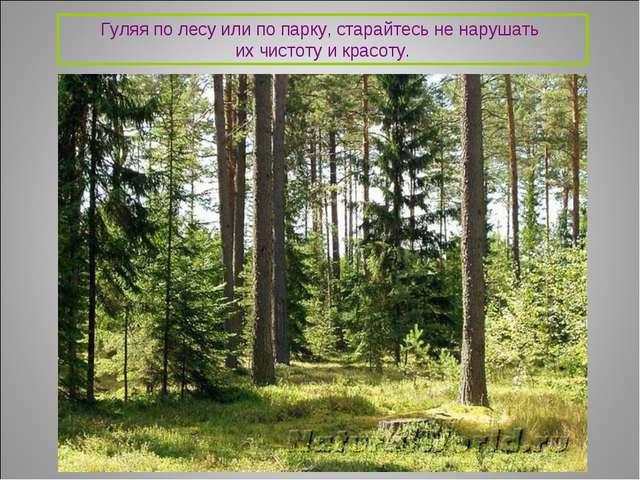 Гуляя по лесу или по парку, старайтесь не нарушать их чистоту и красоту.
