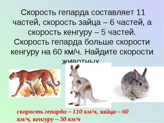 Скорость гепарда составляет 11 частей, скорость зайца – 6 частей, а скорость...
