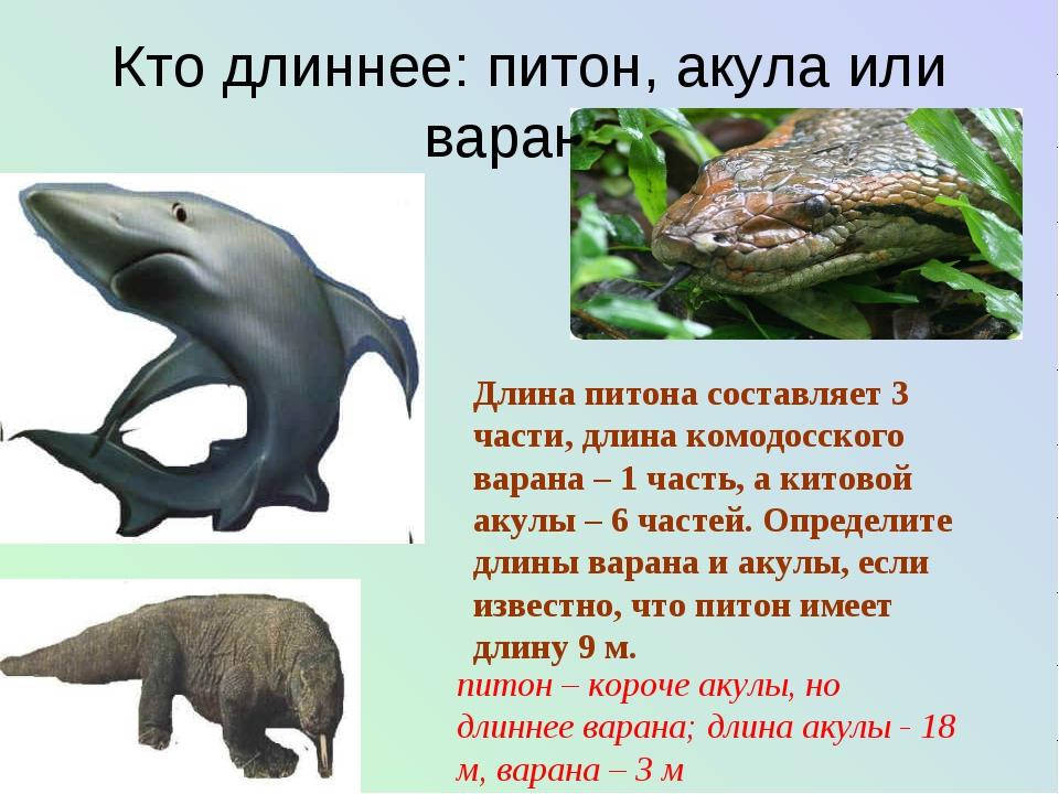Кто длиннее: питон, акула или варан? Длина питона составляет 3 части, длина к...