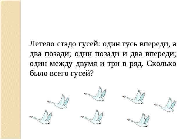 Летело стадо гусей: один гусь впереди, а два позади; один позади и два вперед...