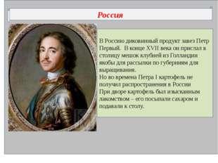 В Россию диковинный продукт завез Петр Первый. В конце XVII века он прислал