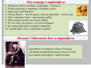 Пословицы о картофеле Иоганн Себастьян Бах и картофель Картофелю посвящали с