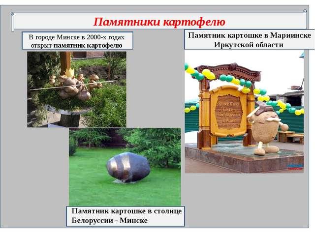 Памятники картофелю В городе Минске в 2000-х годах открыт памятник картофелю...
