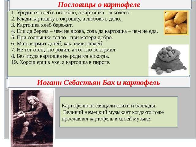 Пословицы о картофеле Иоганн Себастьян Бах и картофель Картофелю посвящали с...