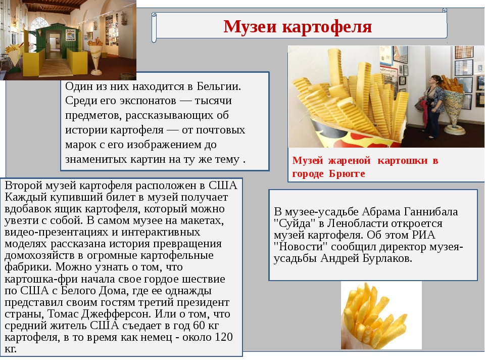 Музеи картофеля Второй музей картофеля расположен в США Каждый купивший биле...